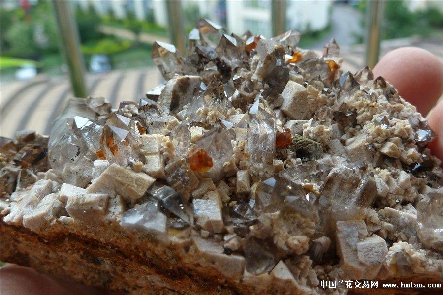 矿物晶体:茶晶 石榴石 云母 长石共生体