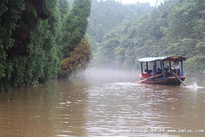 好地方-重庆江津四面山(aaaa风景区)